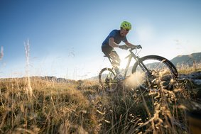 Top Bikes vom Intersport Strasser | © INTERSPORT Austria